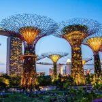 Достопримечательности сингапур